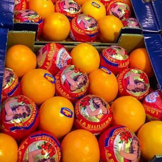 arance tarocco sicilia da spremuta