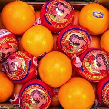 arance tarocco sicilia da tavola
