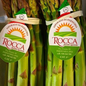 asparagi verdi grossi dei colli euganei