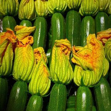 zucchine di latina con fiore