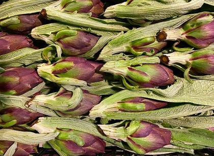 carcioni bottoli sardi toscani