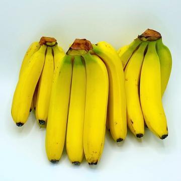 Banane Biologiche
