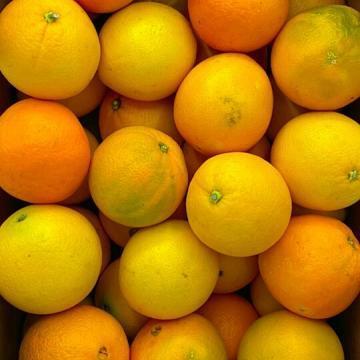 arance da spremuta biologiche italiane