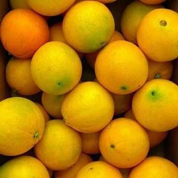 arance biologiche italiane
