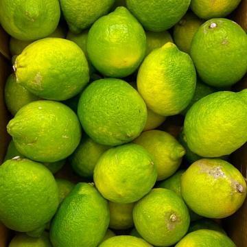 limoni biologici italiani
