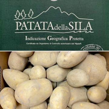 patate italiane della sila igp