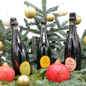 offerte speciali vino italiano vino speciale bianco rosso bollicine, spumanti metodo classico villa rinaldi spumante