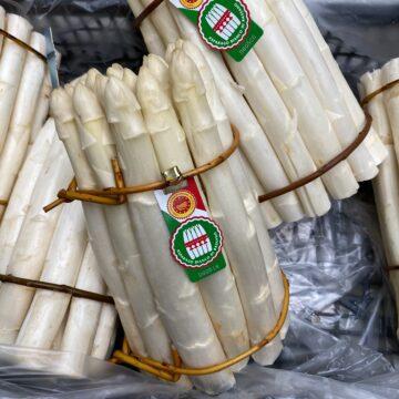 Asparago Bianco IGP di Bassano